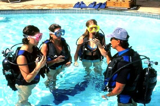Diving education