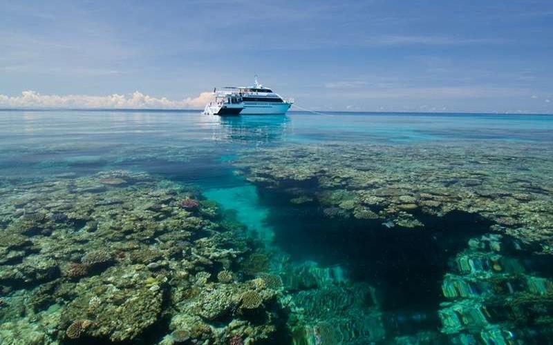 liveaboard great barrier reef